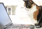 PornHub Comments On Stock Photos
