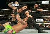 Professional Wrestling
