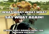 Say What Again!