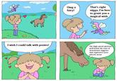 I Wish I Could Talk to Ponies