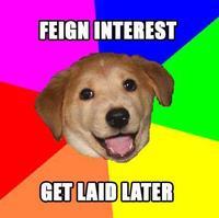 Feigndog
