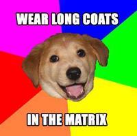 Matrixdog