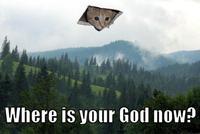 Ceiling Cat