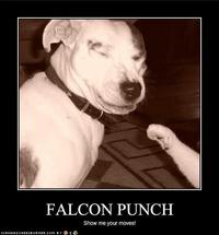 Falcon_punch_dog