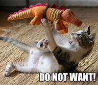 Do_not_want_cat