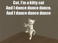 Kitty Cat Dance