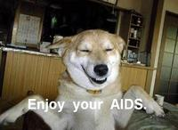 Enjoy Your AIDS