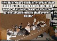 Itteh Bitteh Kitteh Committeh