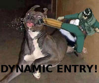 Dynamic Entry