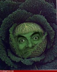 'If Mr Bean Was...'