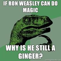 Philosoraptor-if-ron-weasley-can-do-magic-why-is-he-still-a-ginger