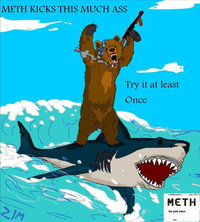 Bear_shark_meth
