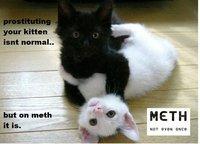 X Isn't Normal, But on Meth It Is