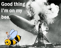 Good Thing I'm On My Bee