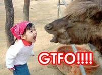 Girl Yelling at Yak