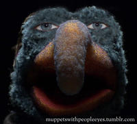 Muppets With People's Eyes