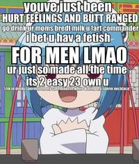 Hurt Feelings and Butt Ranged/Wall of Text Insult Images