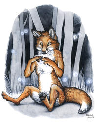 Furries