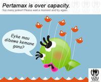 Maho-over-capacity1