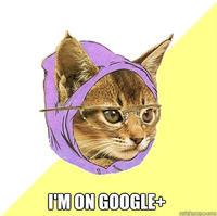Google Plus / Google+