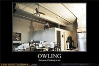 Owling