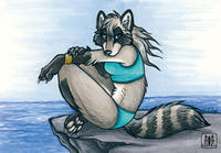 Sea-coon