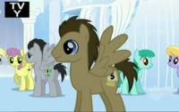 Doctor Whooves / Time Turner