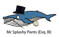 Mister Splashy Pants