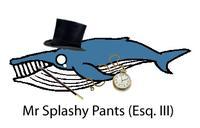 Mister Splashy Pants