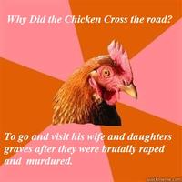 The-absolute-best-of-the-anti-joke-chicken-meme