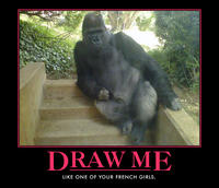 Funny-gorilla-pose-monkey-draw-me-like-one-of-your-french-girls