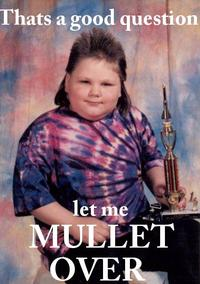 First Place Mullet