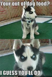 Insanity Puppy