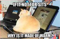If It Fits I Sits