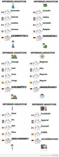 Differenze Linguistiche