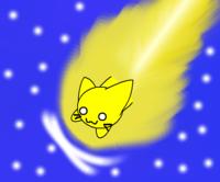 Speedycat