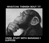 Whatcha Thinkin Bout?
