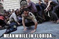 Miami Zombie