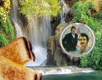 Selleck Waterfall Sandwich