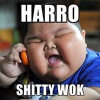 Lu Hao/卢豪
