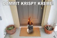 Krispy Kreme / Froggy Fresh