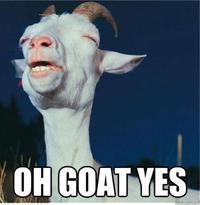 Guilty Pleasure Goat