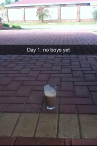 My Milkshake Brings All the Boys to the Yard
