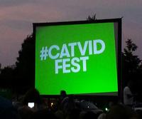 Internet Cat Video Film Festival
