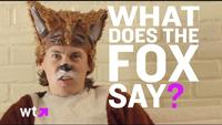 Ylvis - The Fox