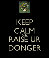 Raise Your Dongers