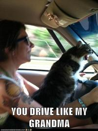 You drive like my f**king grandmother!