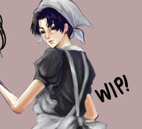 Cleaning Levi