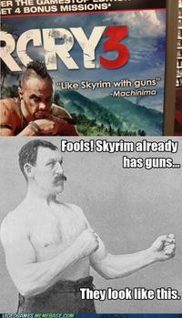 Like Skyrim With Guns