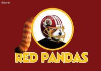 Washington Redskins Name Controversy